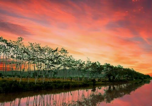 夜明け, 日没, 雲の無料の写真素材