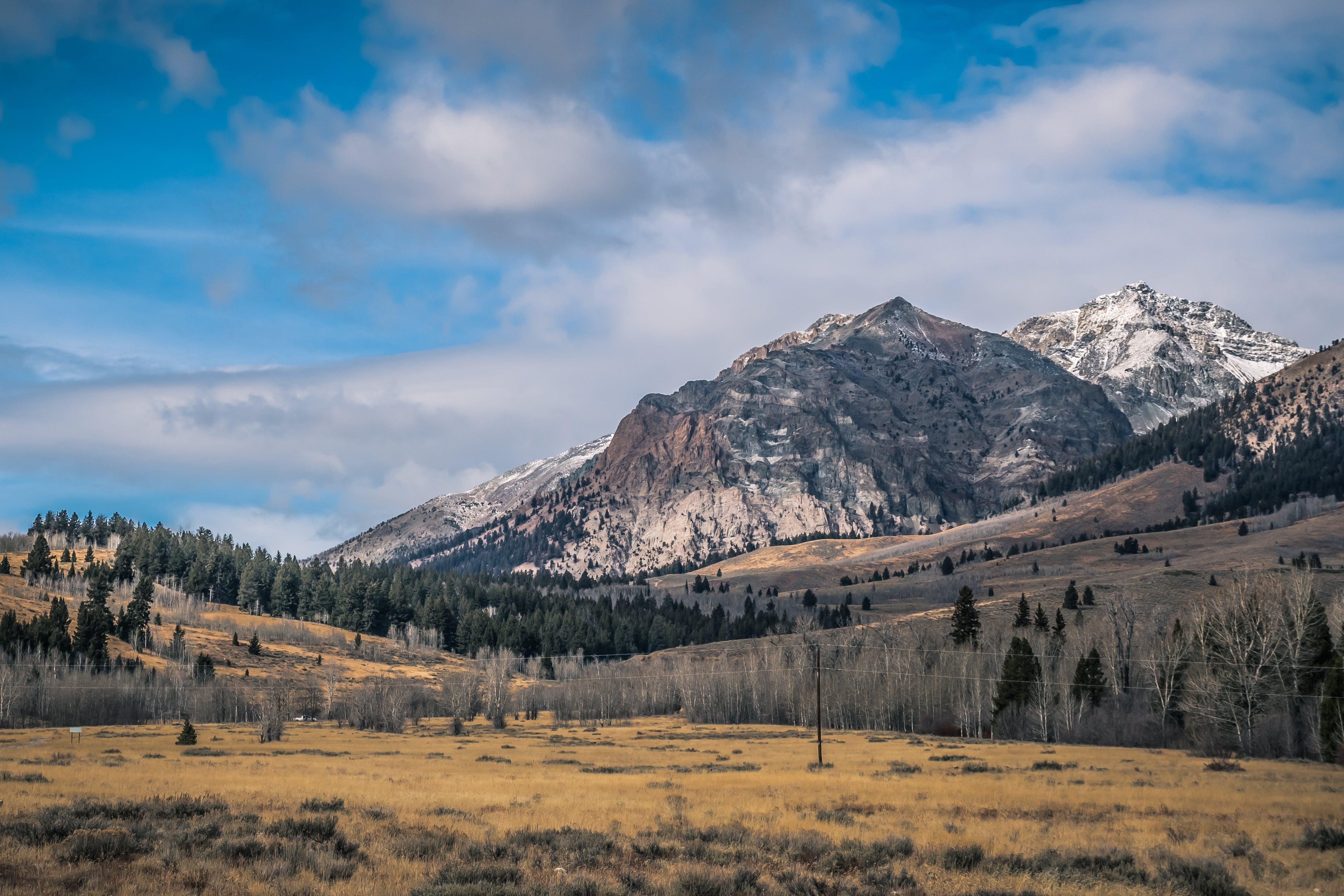 Gratis lagerfoto af bjerge, bjergtinde, dagslys, græs