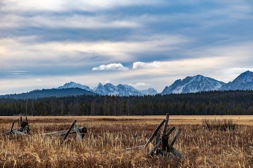 Gratis lagerfoto af bane, bjerge, dagslys, græs