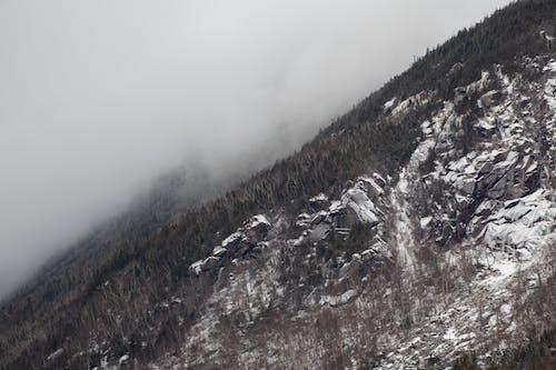 Kostenloses Stock Foto zu bäume, berg, dunstig, eis