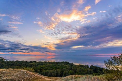 Fotos de stock gratuitas de amanecer, arboles, bosque, cielo azul