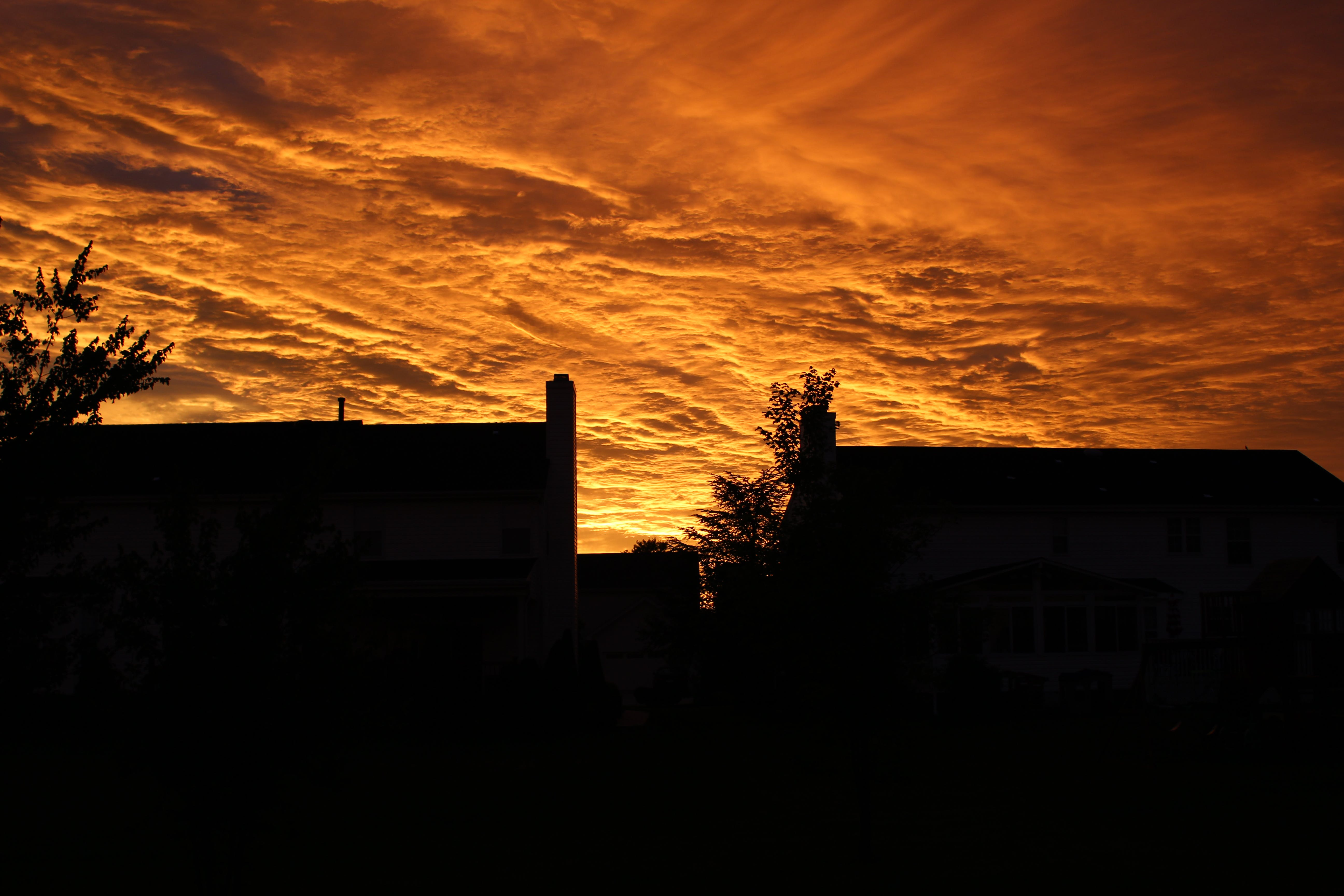 Silhouette of Buildings Under Orange Sky during Sunset