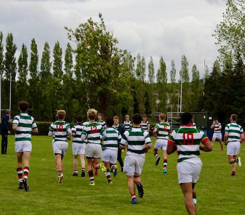 Photos gratuites de équipe, rugby, Victoire