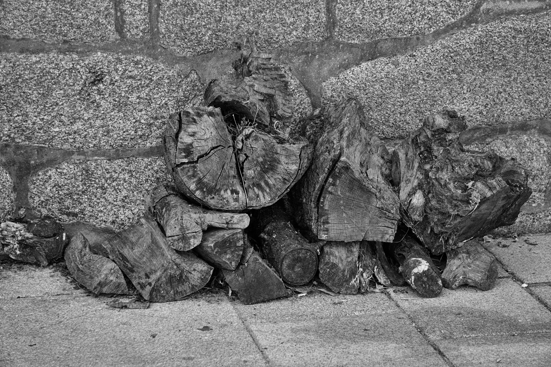 Foto stok gratis batang kayu, dinding, dinding batu, hitam & putih
