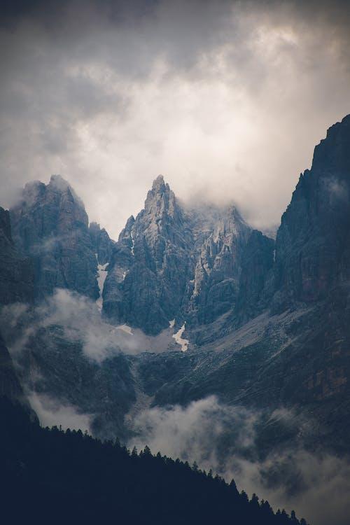 ağaçlar, bulutlar, buz, buzul içeren Ücretsiz stok fotoğraf