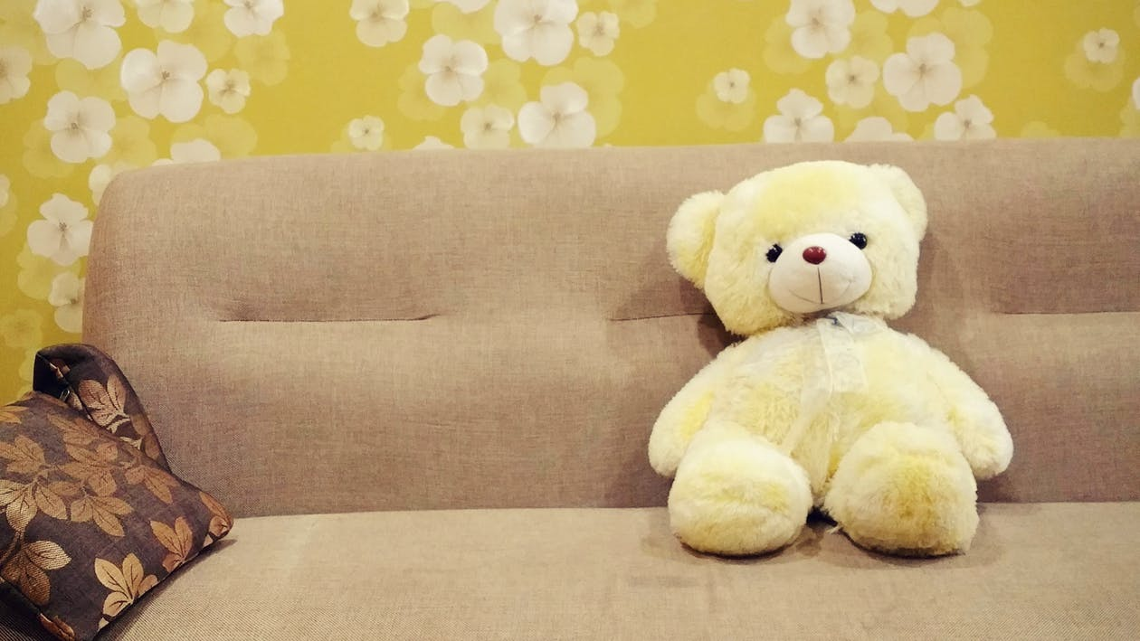Teddy Bear on Sofa
