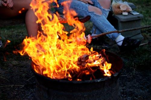 Foto profissional grátis de ardente, área de camping, calor, campo
