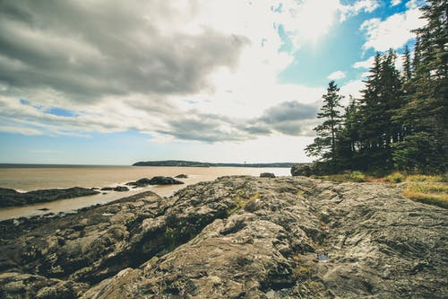 Free stock photo of canada, coastal, nature park, saint john