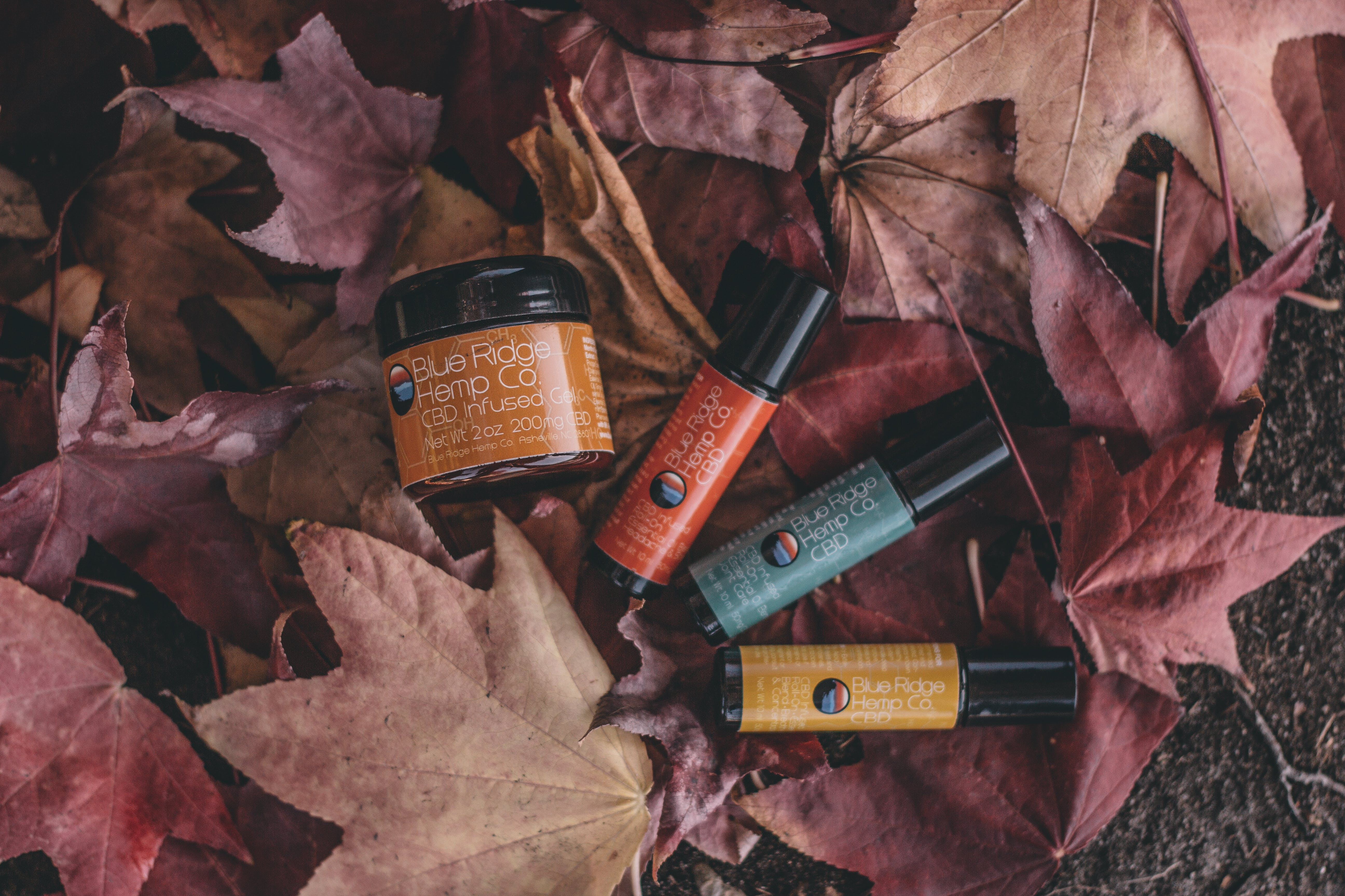 Flat Lay Photography of Several Product Bottles on Withered Leaves