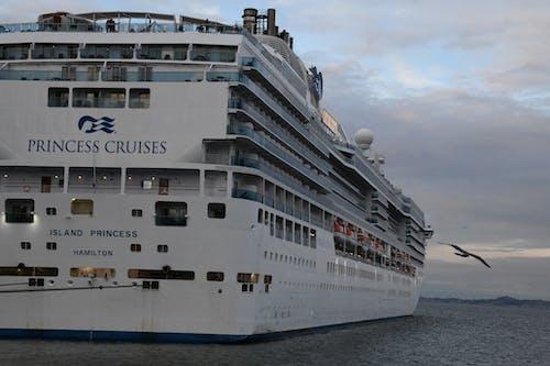 Kostenloses Stock Foto zu kreuzfahrtschiff