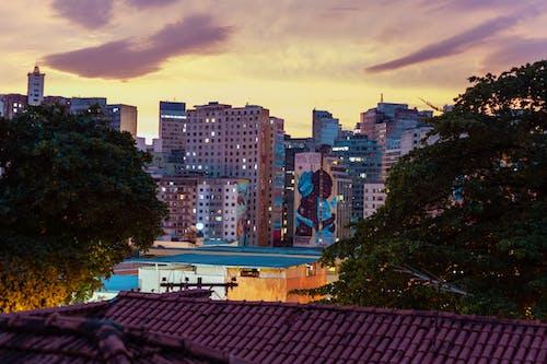 도시의 무료 스톡 사진