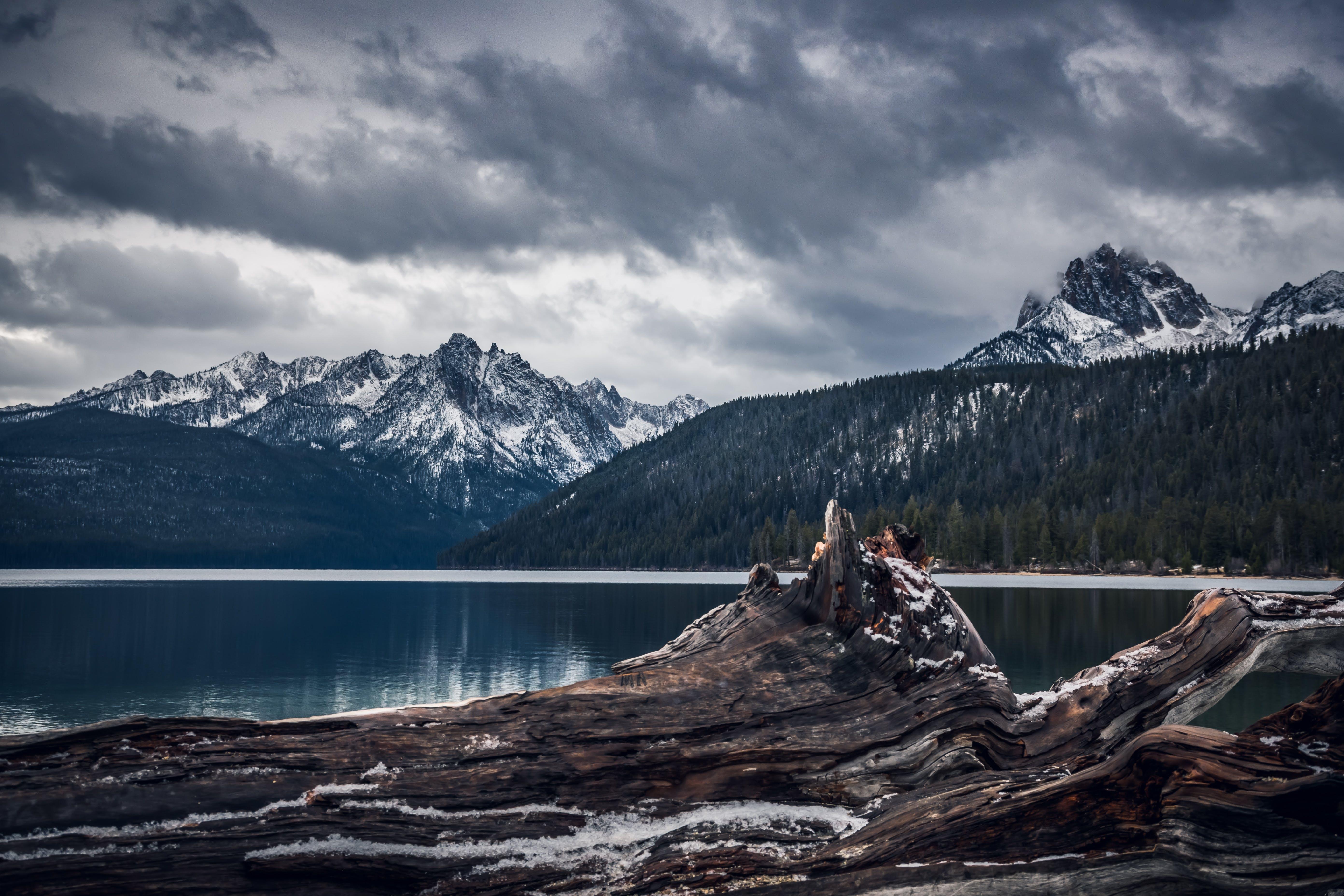ağaçlar, ahşap, bulutlar, dağ içeren Ücretsiz stok fotoğraf