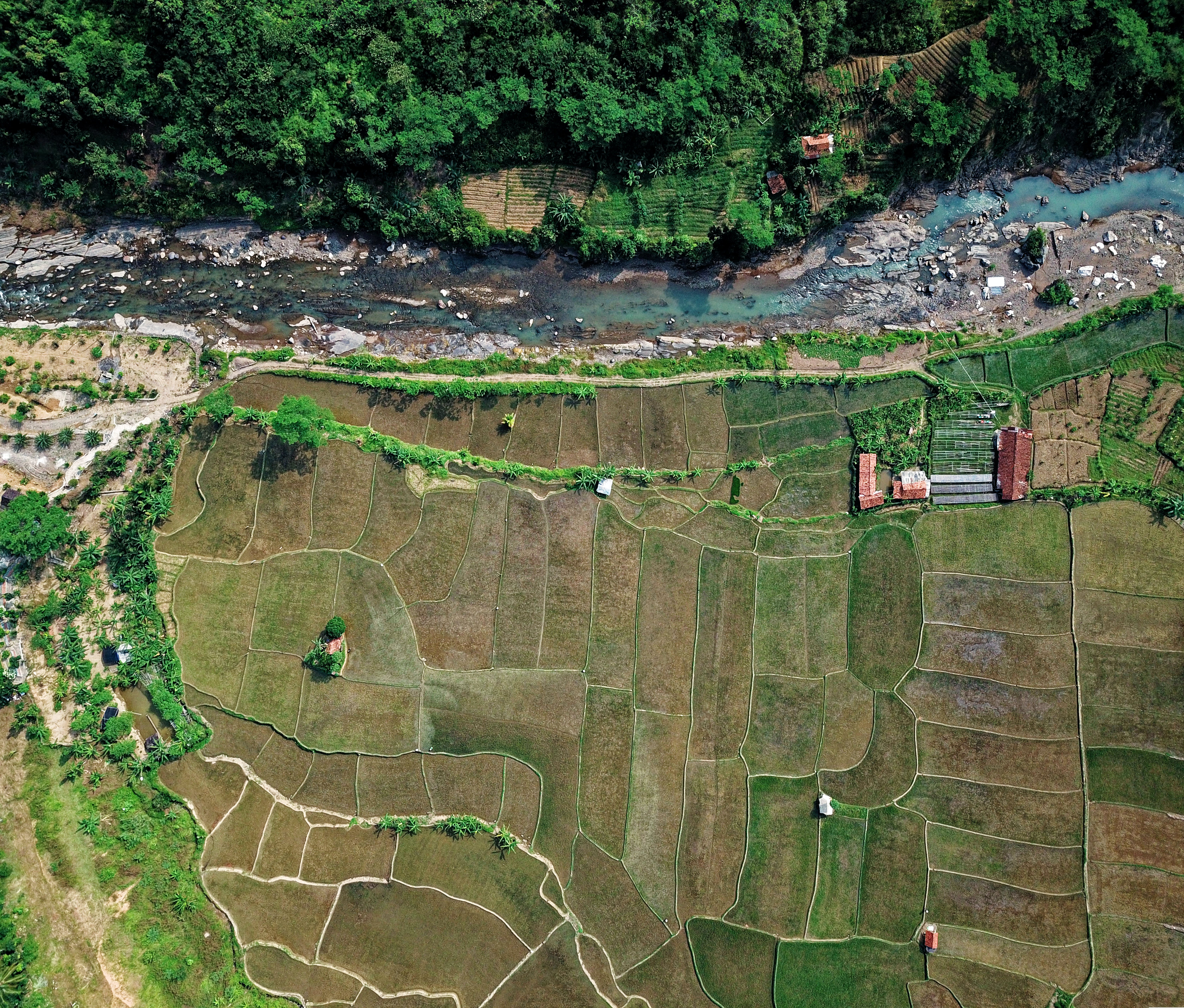 Aerial Photography Of River Beside Cropland