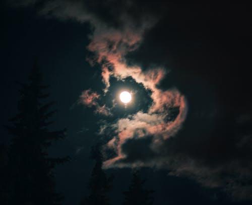 午夜, 夜空, 度蜜月, 月亮 的 免费素材照片