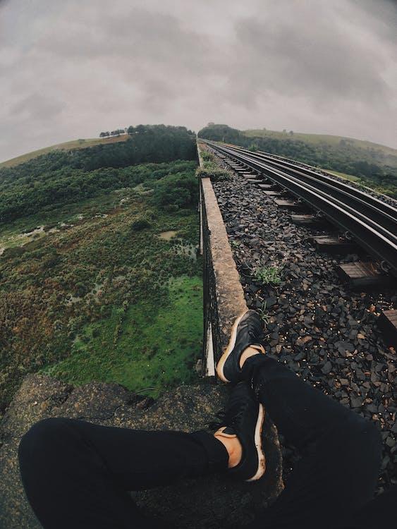 ağaçlar, bakış açısı, demir yolu