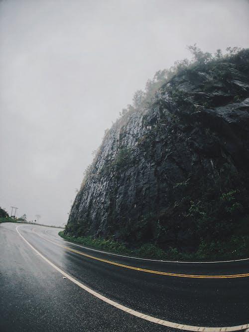Бесплатное стоковое фото с асфальт, дорога, изгиб, мокрый