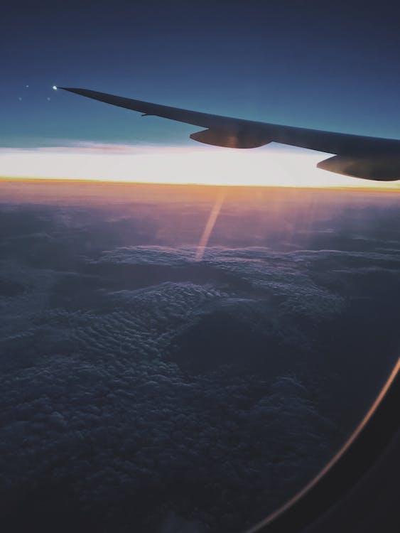 bầu trời, bay, canh