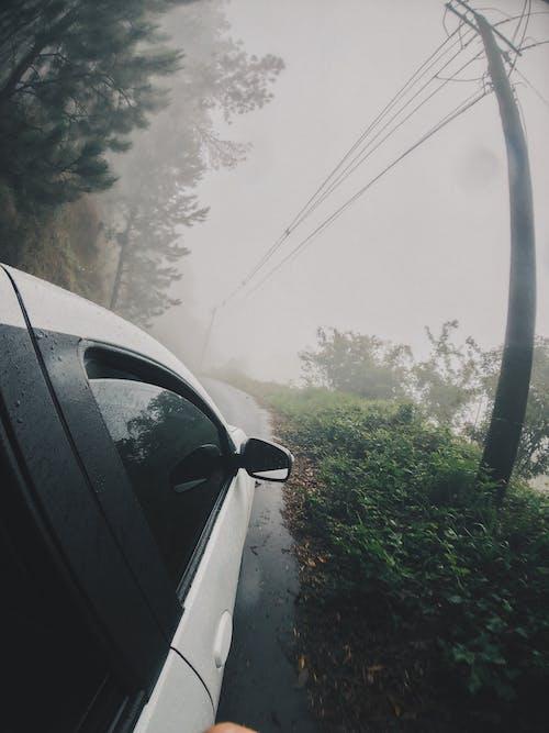 Imagine de stoc gratuită din automobil, ceață, cețos, drum