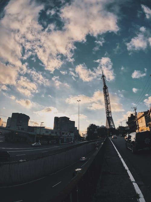 シティ, タワー, ダウンタウン, ブリッジの無料の写真素材