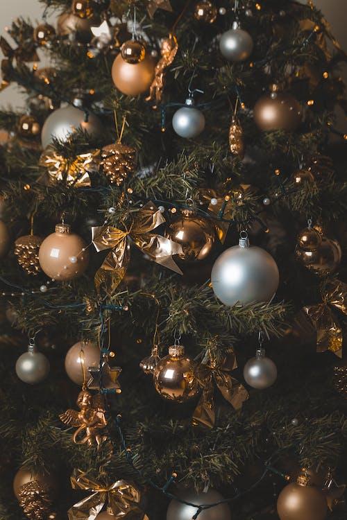 お祝い, つまらないもの, クリスマス