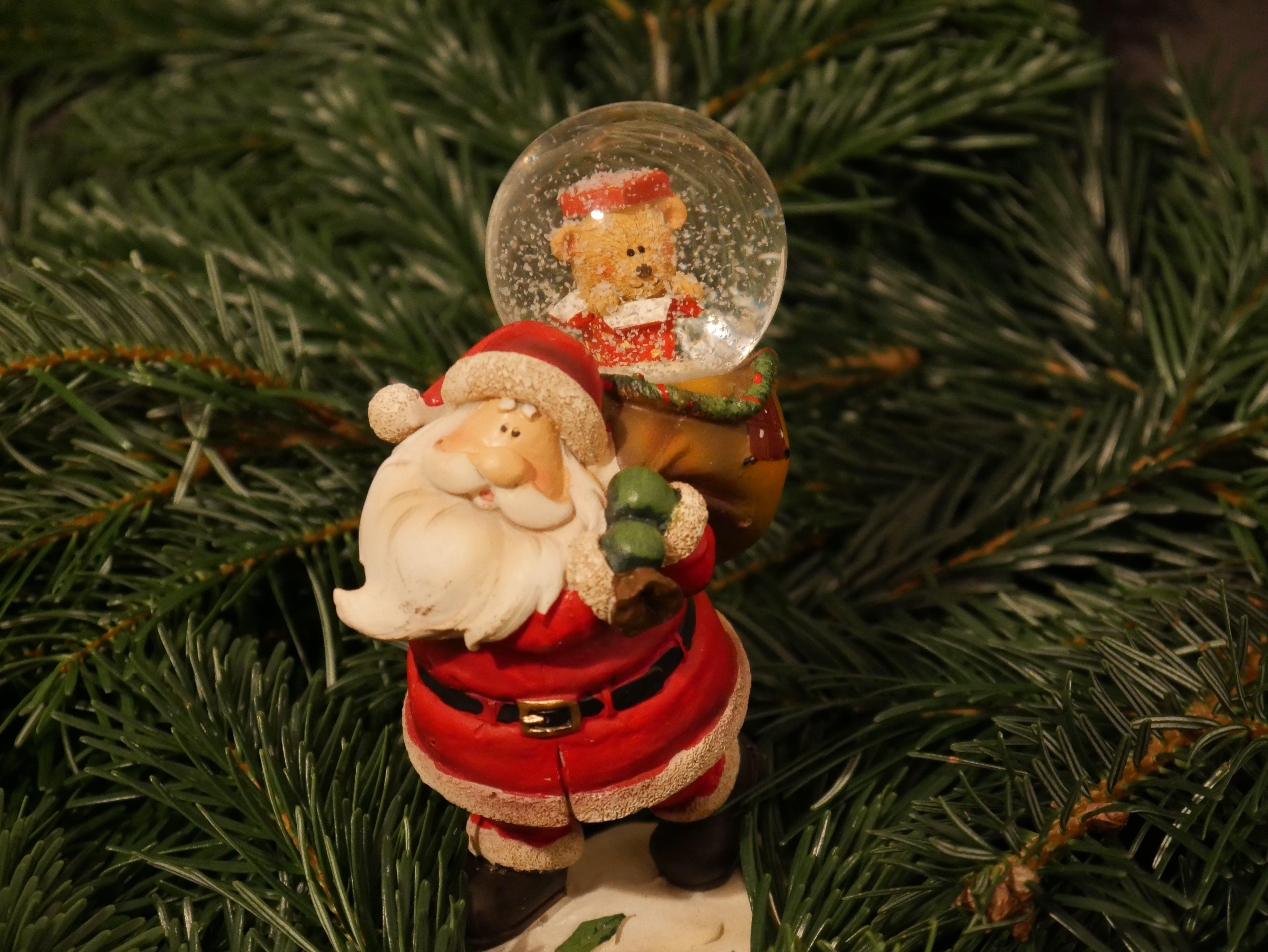 Free stock photo of christmas, christmas decoration, fir