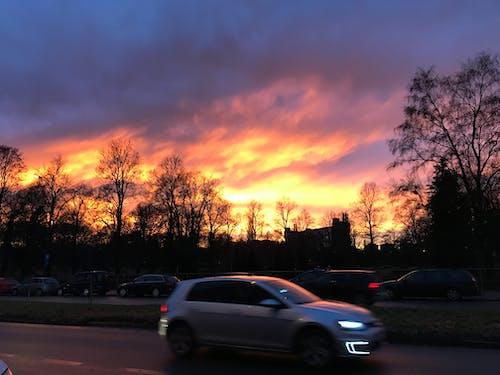Immagine gratuita di alberi, auto, cielo, cielo rosso