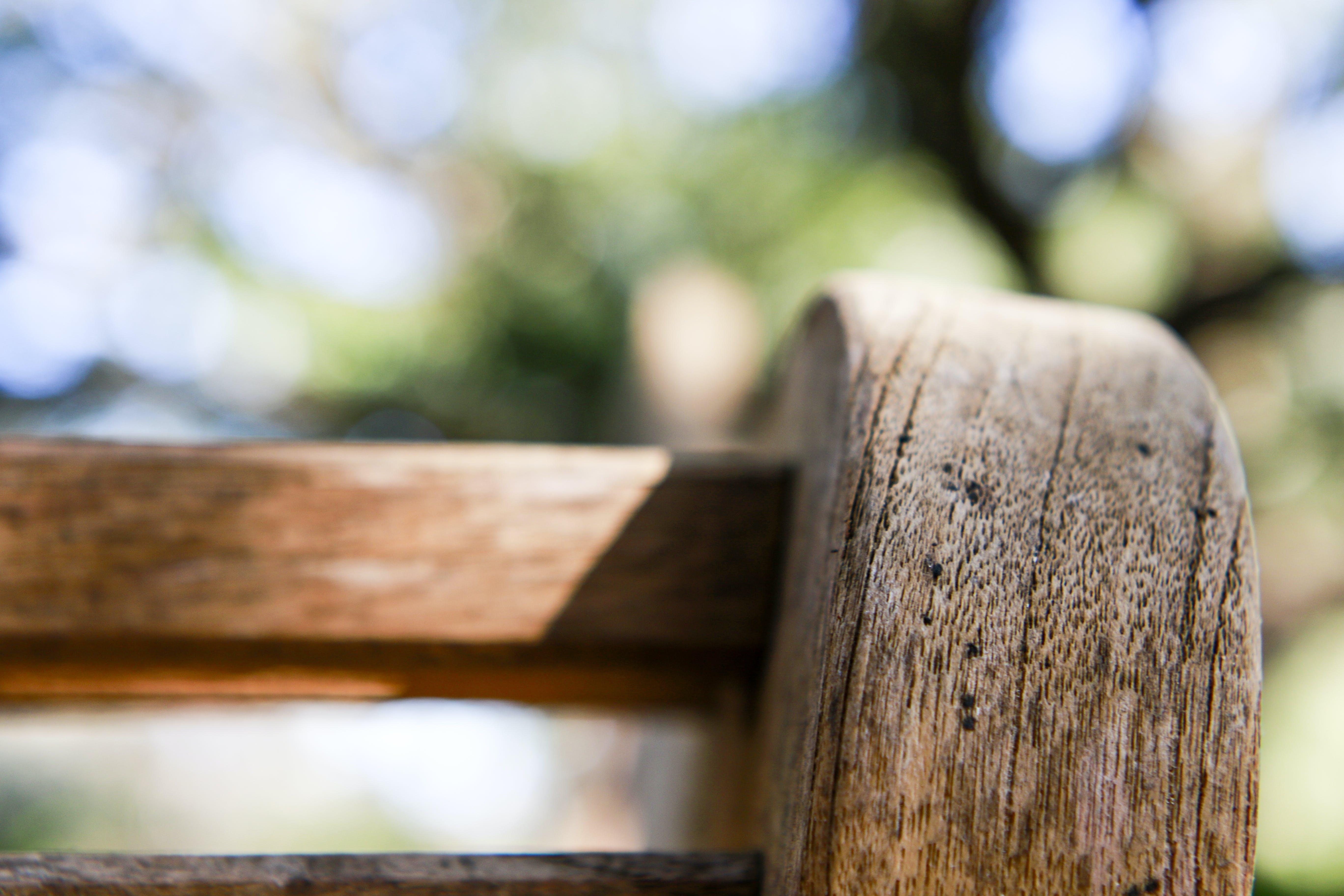 Free stock photo of #autumn, #backyard, #bench, #bokeh