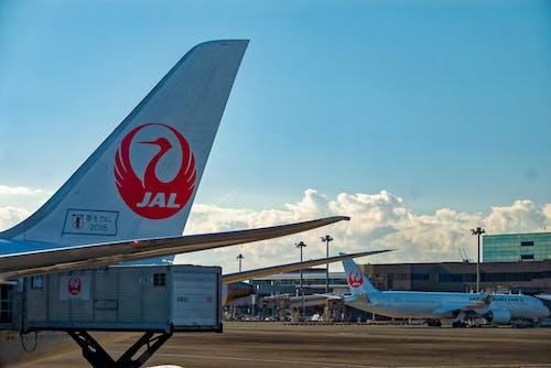 Δωρεάν στοκ φωτογραφιών με αερογραμμή, αεροδρόμιο, αεροπλάνα