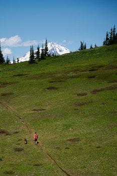 Kostenloses Stock Foto zu landschaft, person, hügel, berg