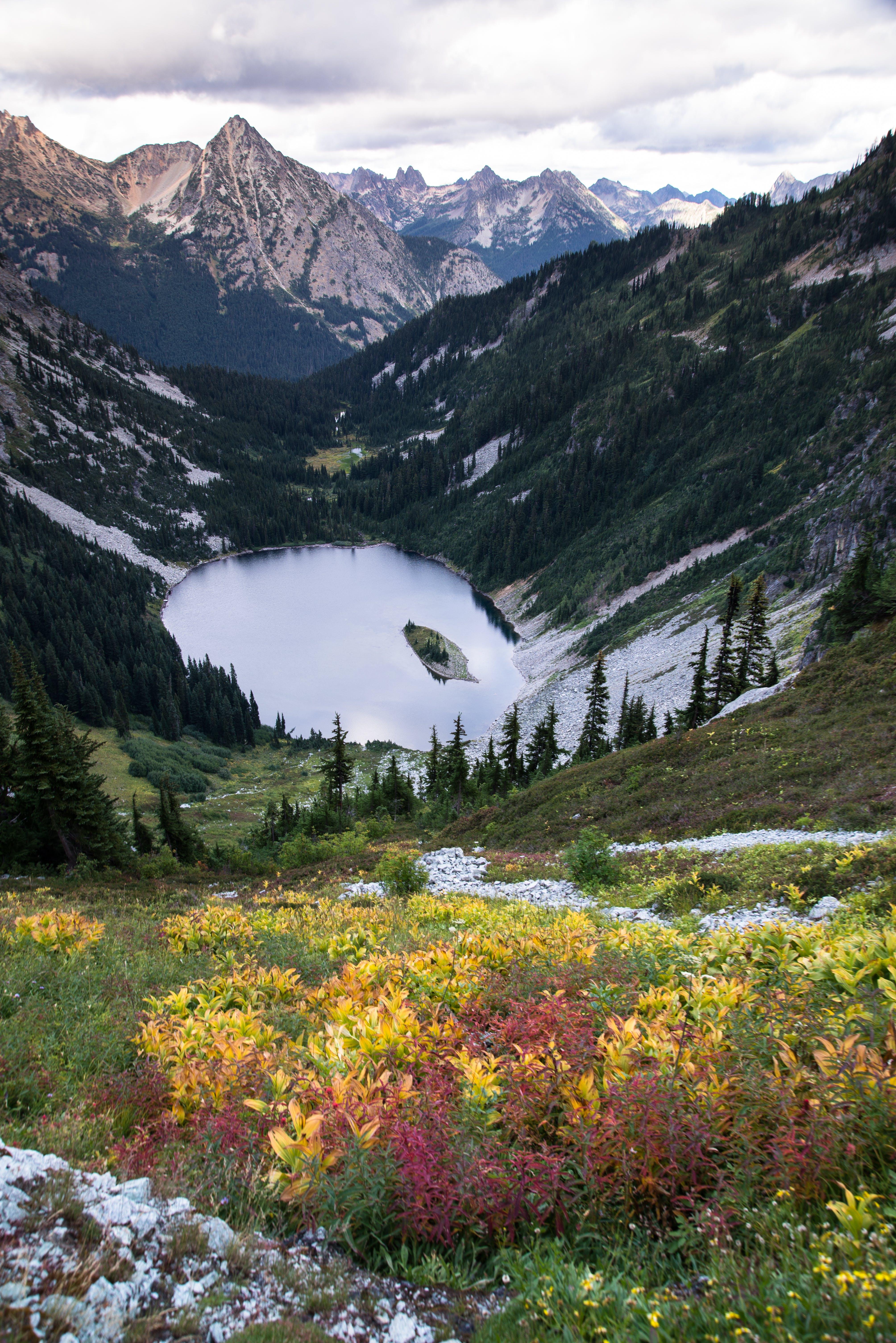 daylight, fall, lake