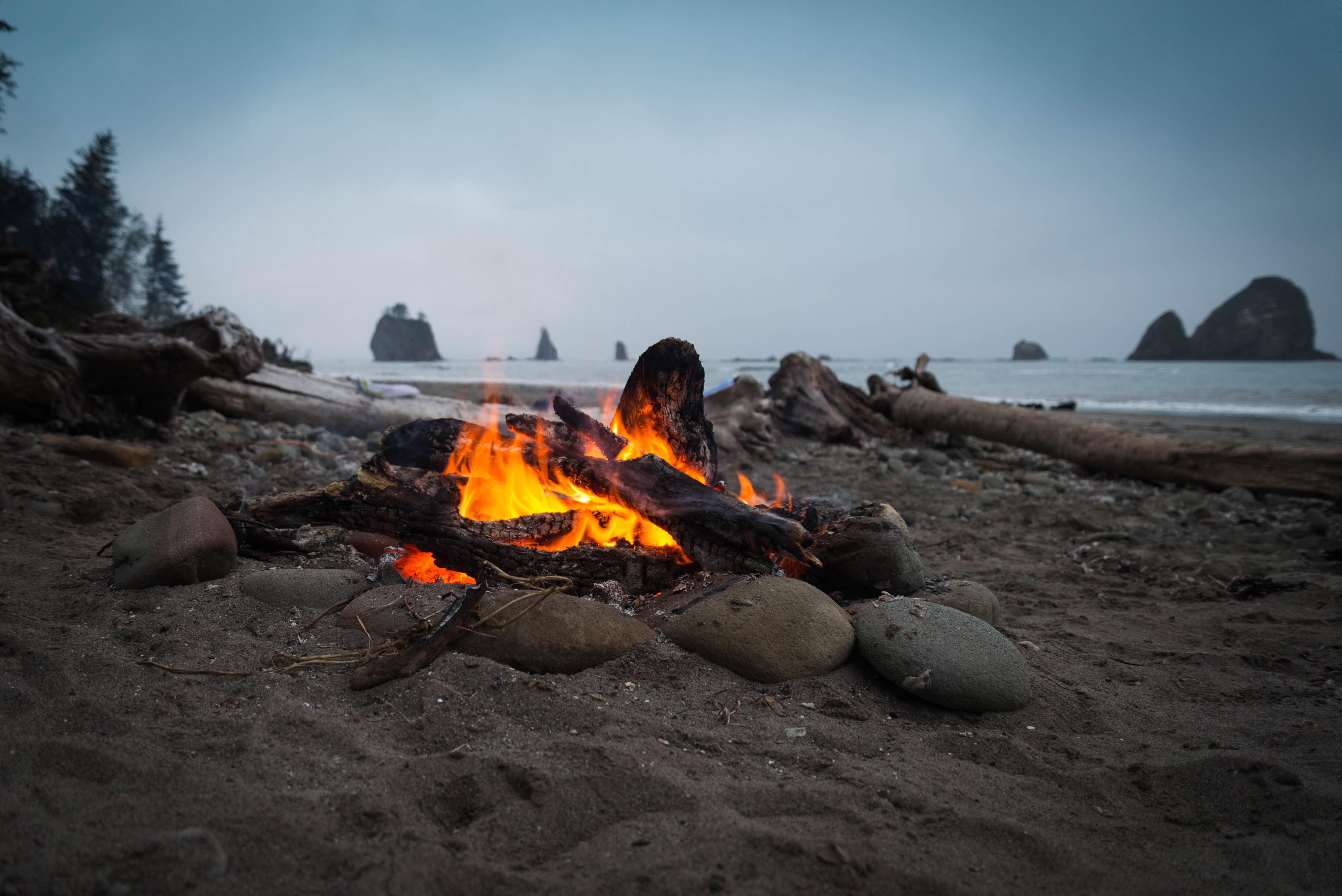 100+ amazing campfire photos · pexels · free stock photos