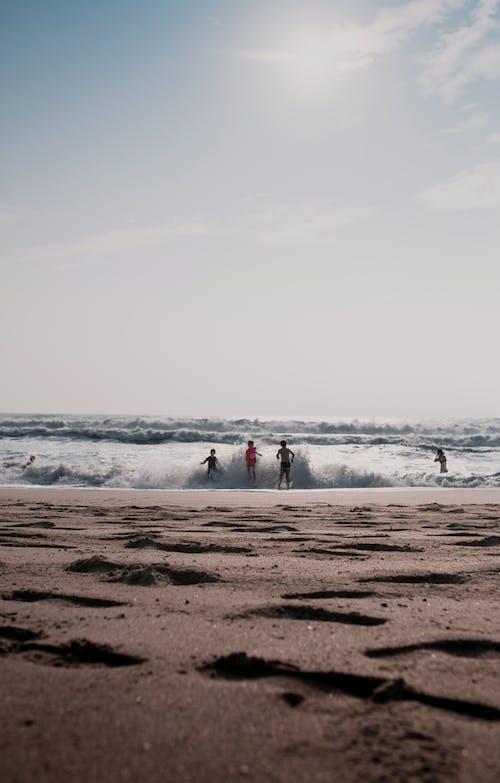 Immagine gratuita di bagnasciuga, divertimento, inverno, litorale