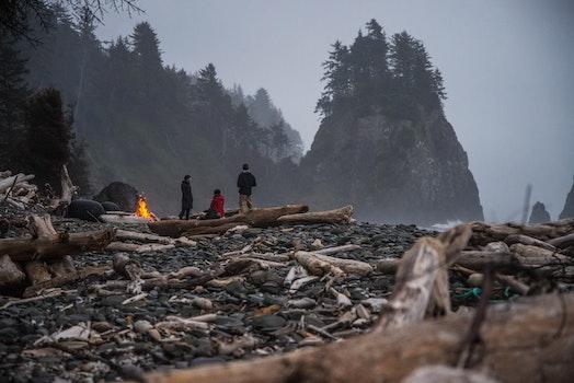 Free stock photo of nature, people, rocks, trees