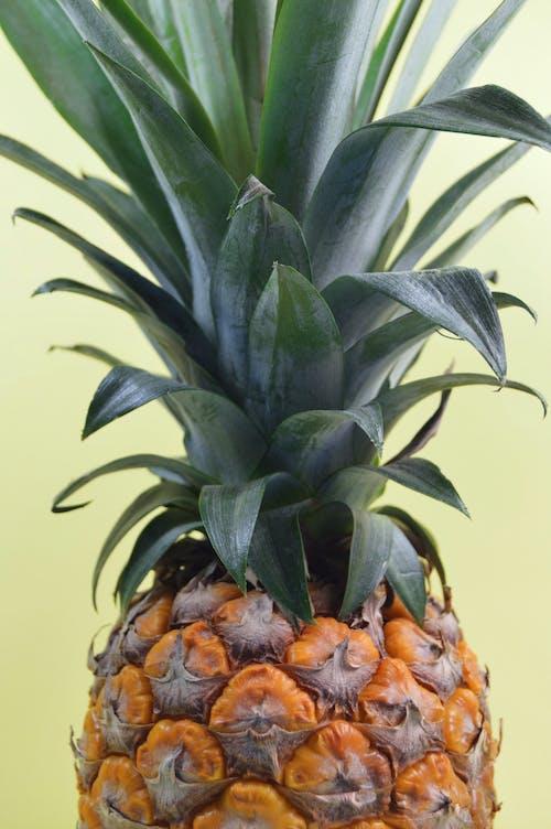 Photos gratuites de aliments, ananas, délicieux, fruit
