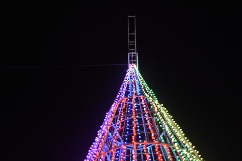 Foto stok gratis lampu, pohon Natal, pohon natal cahaya