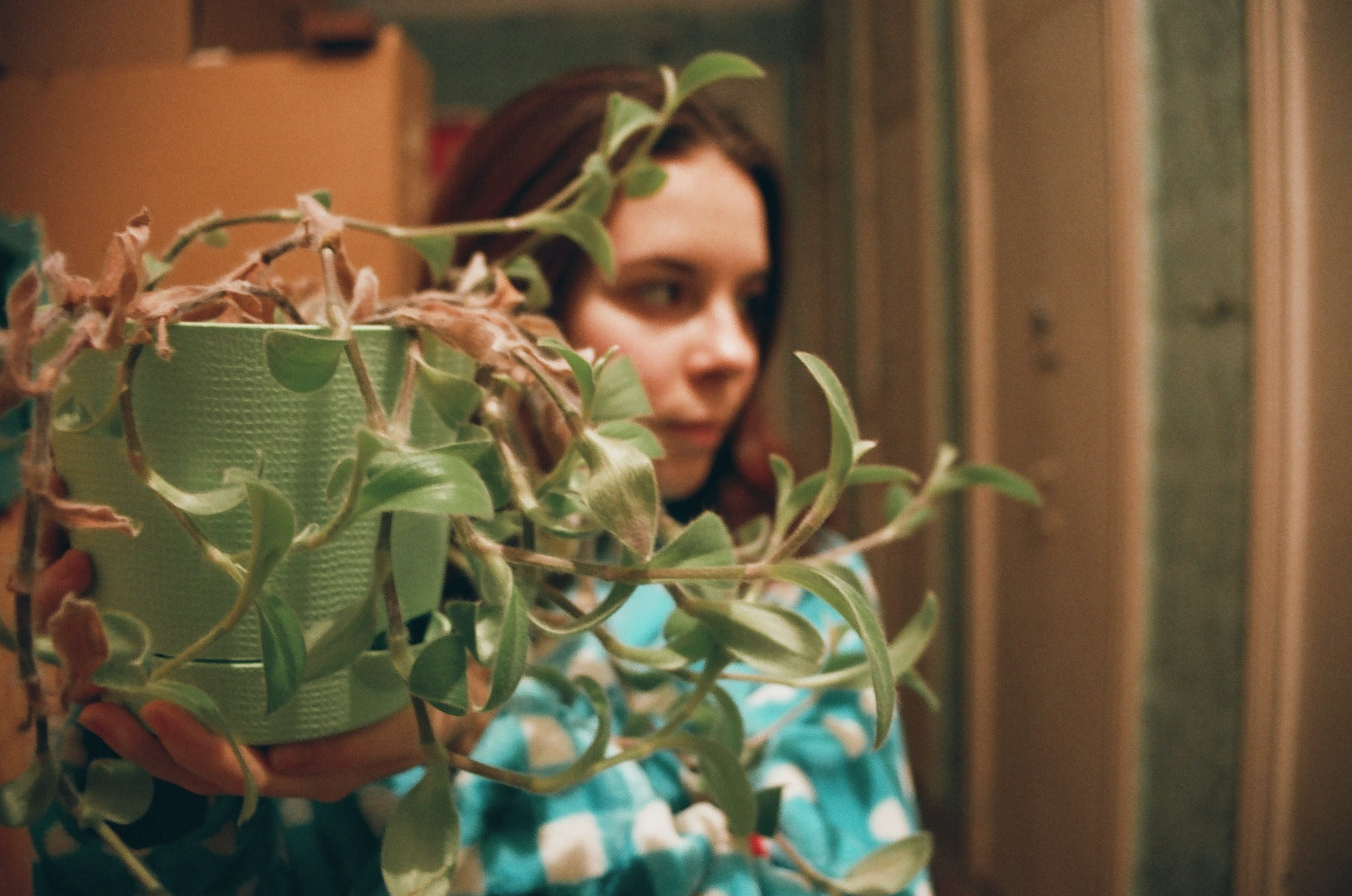 Woman Behind A Pot Plant