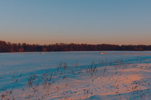 Kostenloses Stock Foto zu dämmerung, feld, frost, kalt