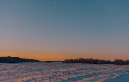 Δωρεάν στοκ φωτογραφιών με Ανατολή ηλίου, αυγή, γήπεδο