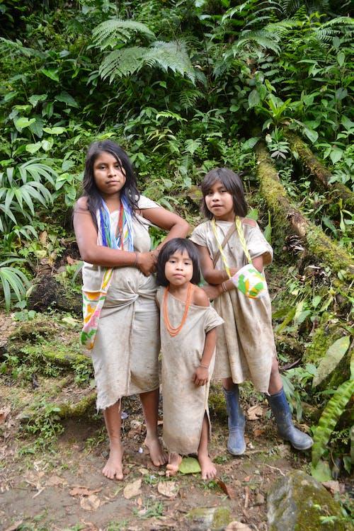 Gratis lagerfoto af børn, jungle