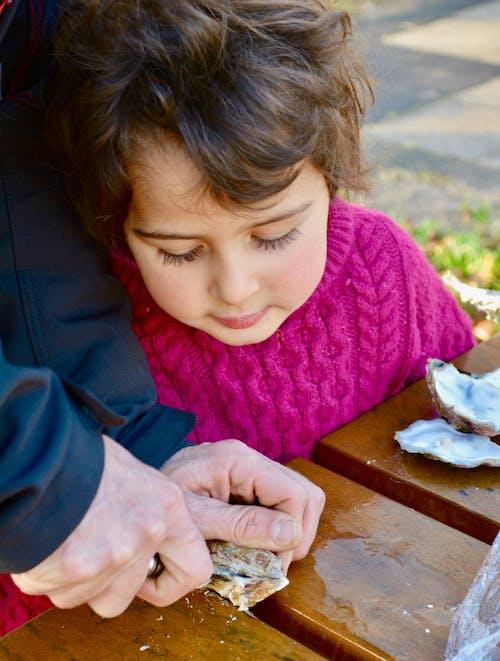 Gratis lagerfoto af fisk og skaldyr, Pige