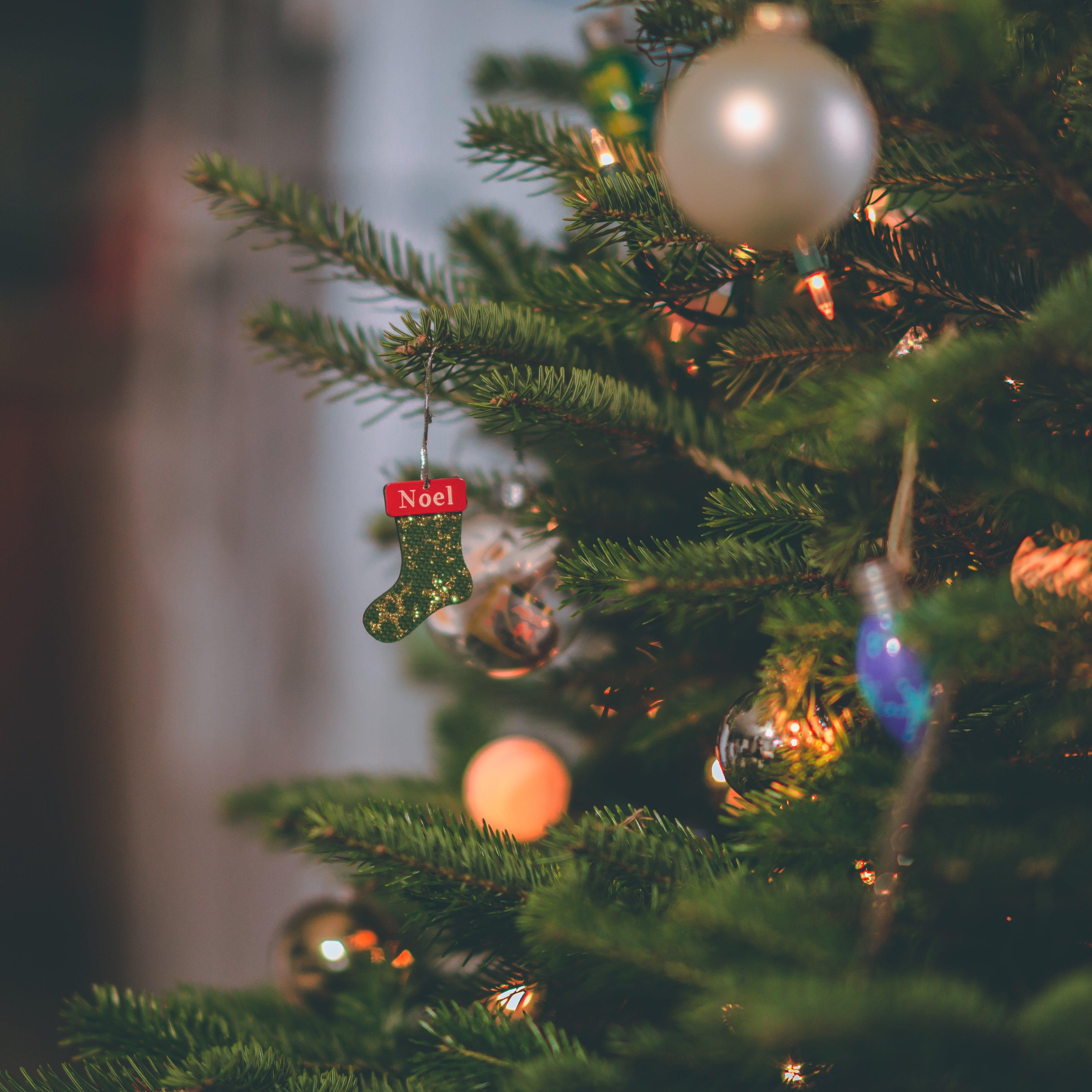 Close-up Photography Christmas Tree