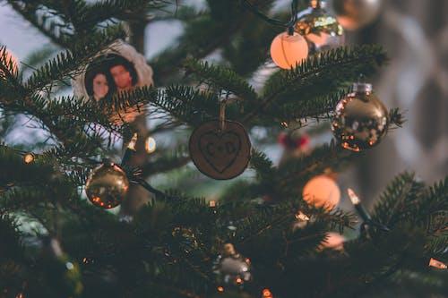 Gratis arkivbilde med ferier, hengende, jul, juledekorasjoner