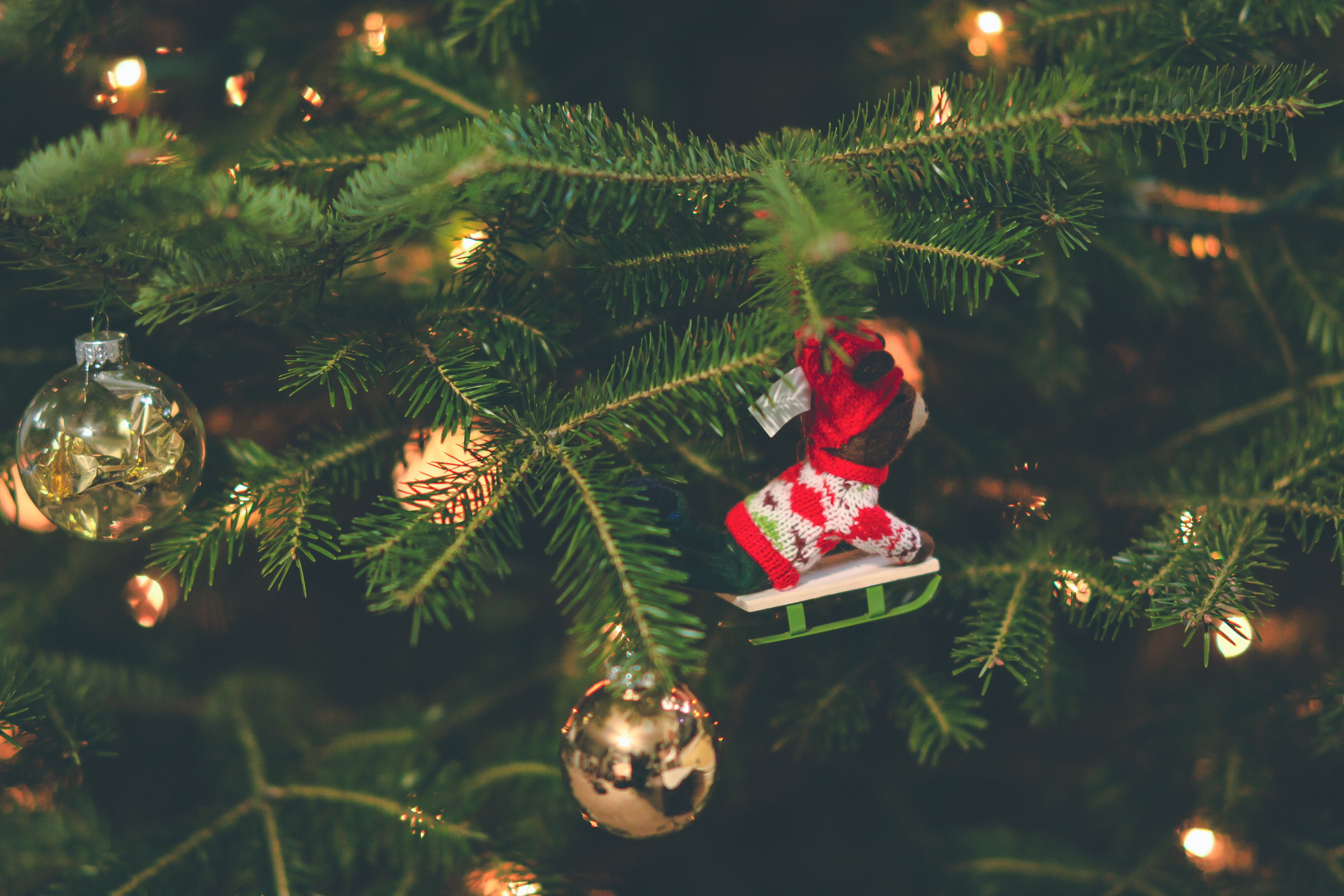Shallow Focus Photography of Red and White Hanging Christmas Tree Decor