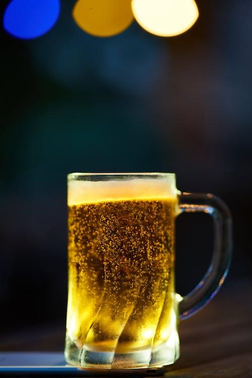 冷, 啤酒, 喝