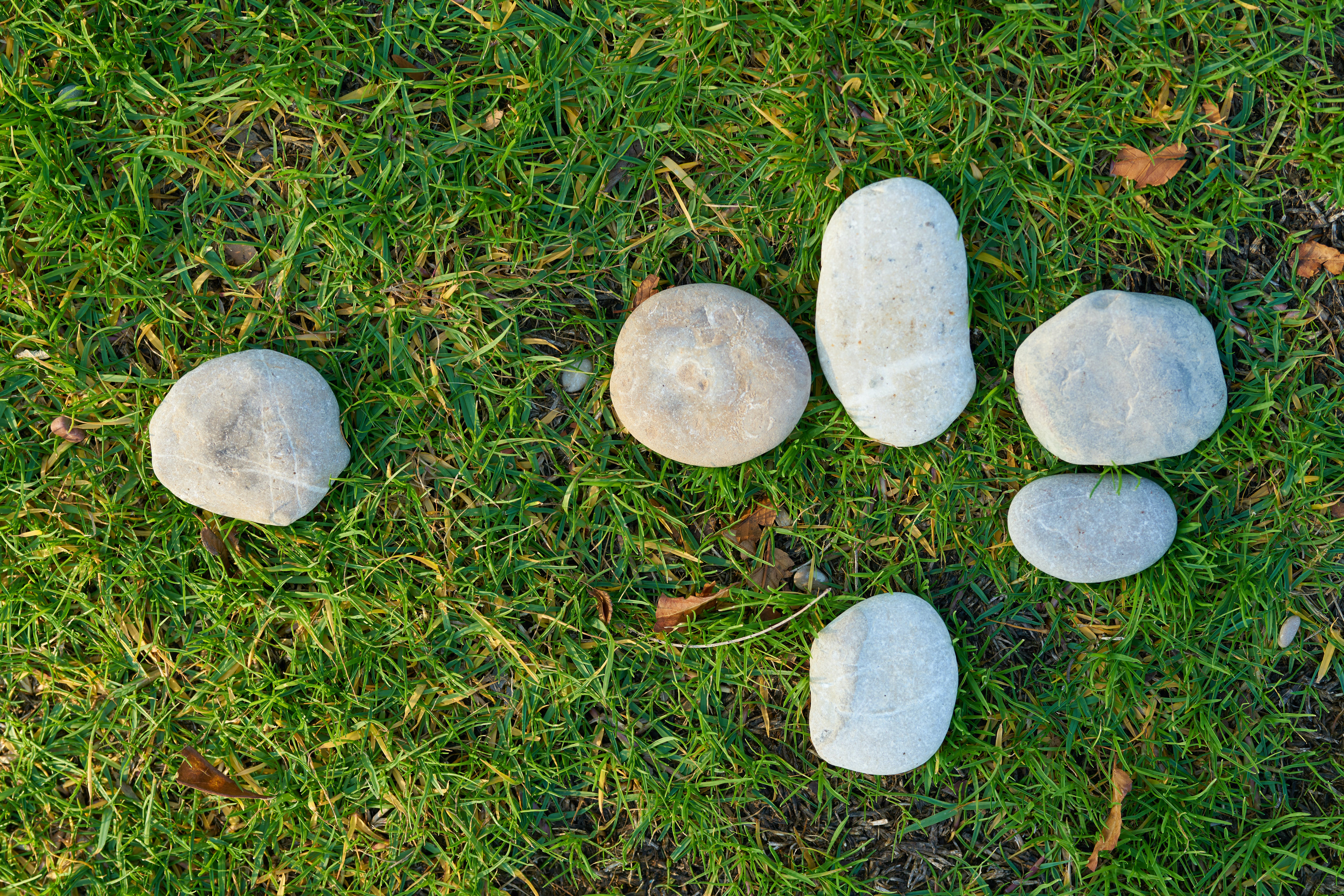 Six Gray Stone on Lawn Grass