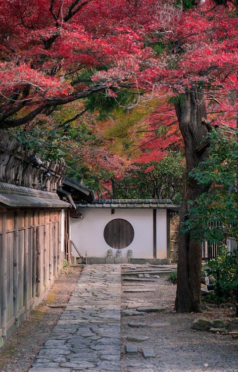 亞洲建築, 公園, 季節