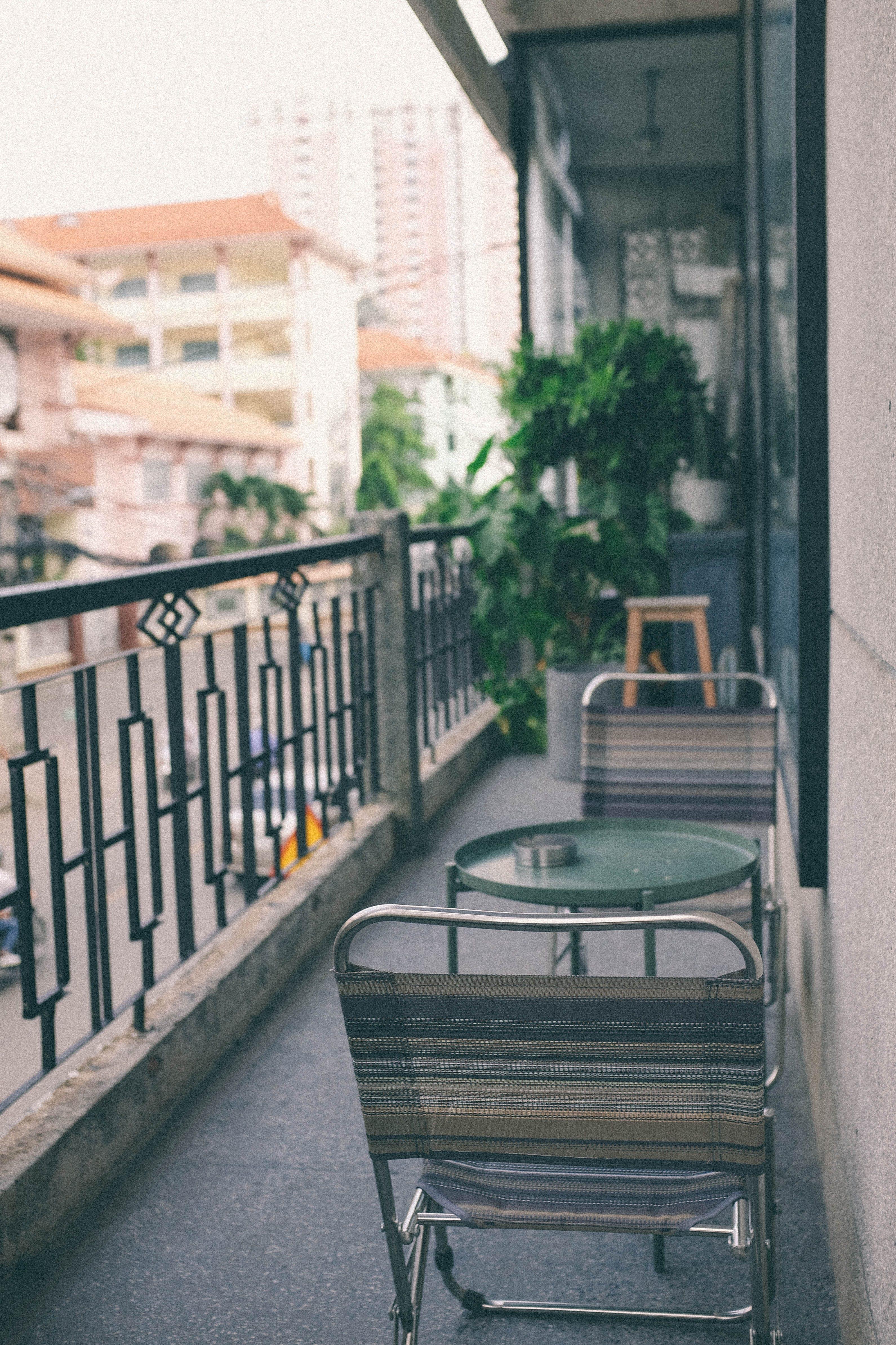 Fotos de stock gratuitas de balcón, cactus, café, cafetería
