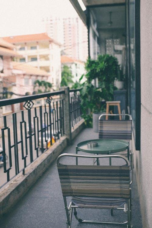 Photos gratuites de balcon, cactus, café, chaise