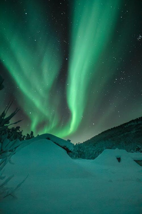 aurora, aurora boreală, celebrități