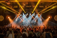 people, lights, festival